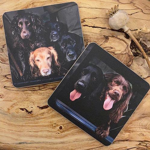 Working Dog Drinks Coasters