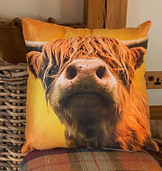 highland cow cushion.jpg
