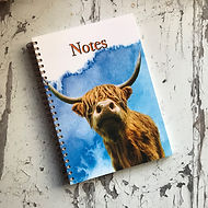 Highland Cow Notebook 1.jpg