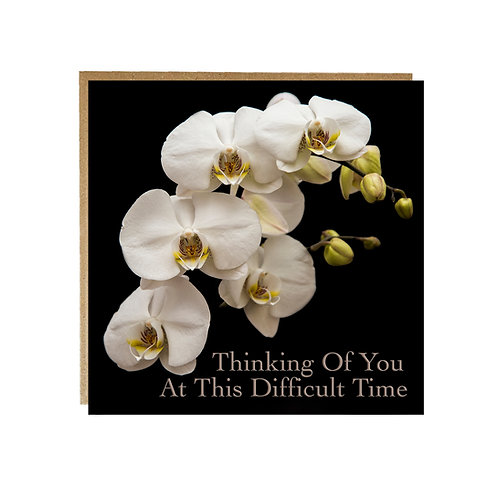 Orchid With Sympathy Card - Thinking of you at this difficult time .