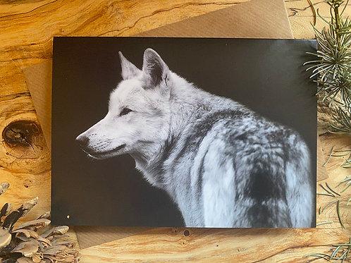 Wolf Greeting Card (WGC001)