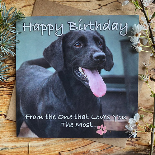Dog Birthday Card - From the one that loves you the most