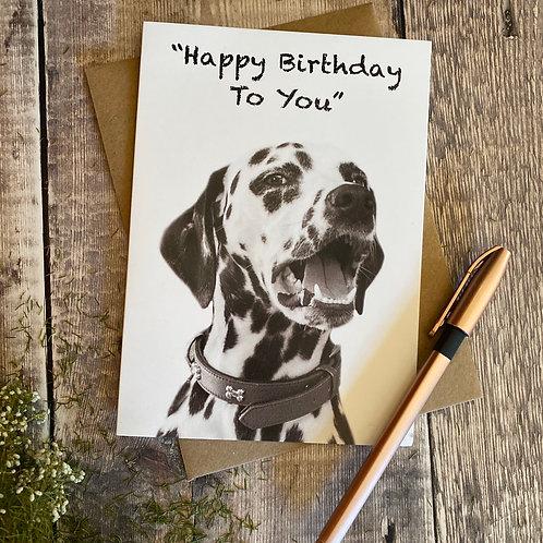 Happy Birthday - Dalmation dog greeting card