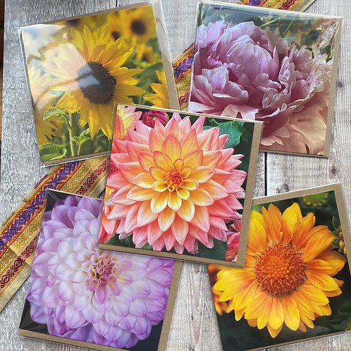 Flower greeting cards - pack of 5  beautiful floral greeting cards