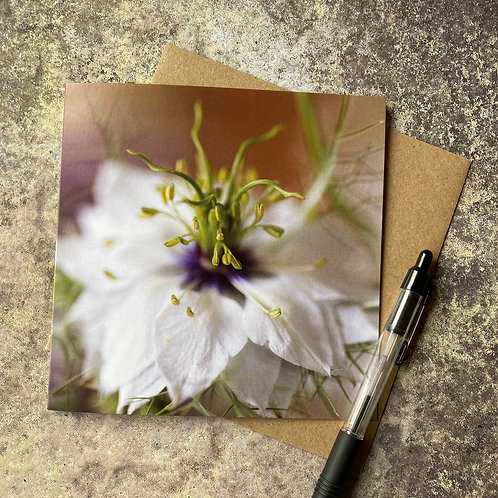 Nigella in the Mist Floral image greeting card