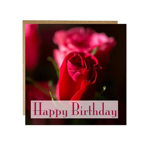 Red Rose Happy Birthday card
