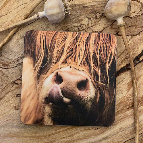 Highland Cow Drinks Coasters