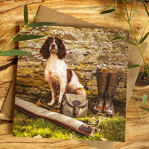 Lord Of The Manor - Spaniel card