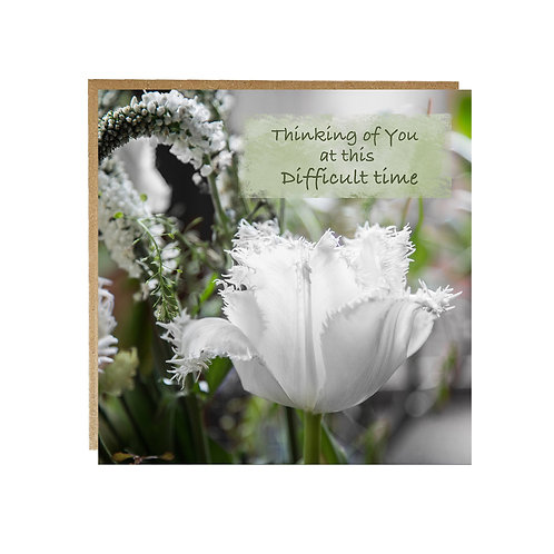 Thinking of You at this Difficult Time Card