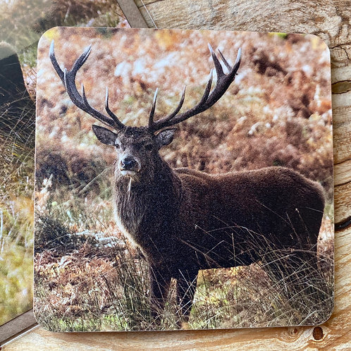 Stag Drinks coaster