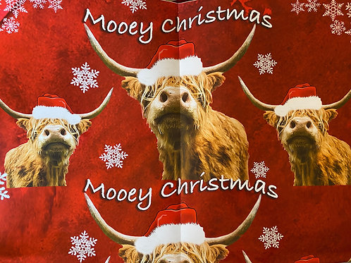 Highland Cow mooey Christmas wrapping paper