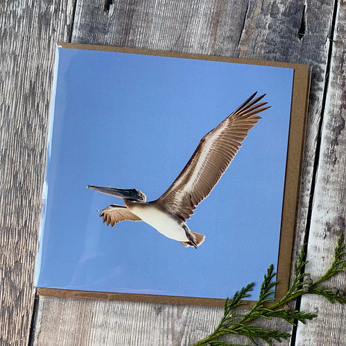 Pelican against a bright blue sky - Greeting Card