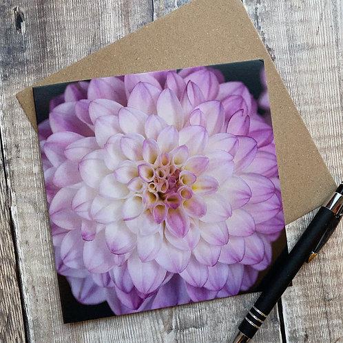 FC015 Pink Dhalia Greeting Card