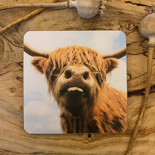 Lovely Highland Cow Drinks Coasters