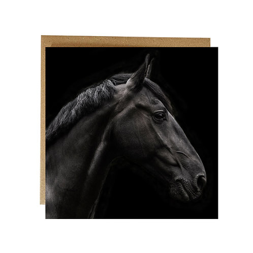 Handsome, alert and bright eyed Horse Portrait Greeting card