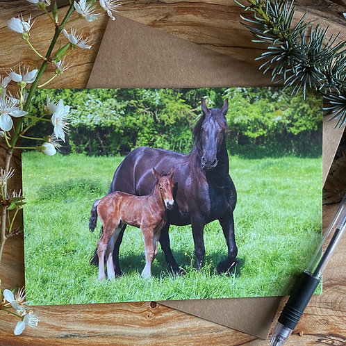 Mare and her Foal Horse Greeting Card