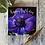Thumbnail: Purple Anemone Happy Birthday card