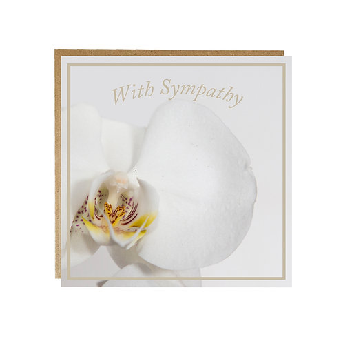 White Orchid With Sympathy Card