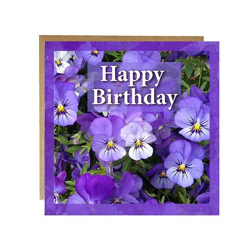 Purple Violas Happy Birthday Card