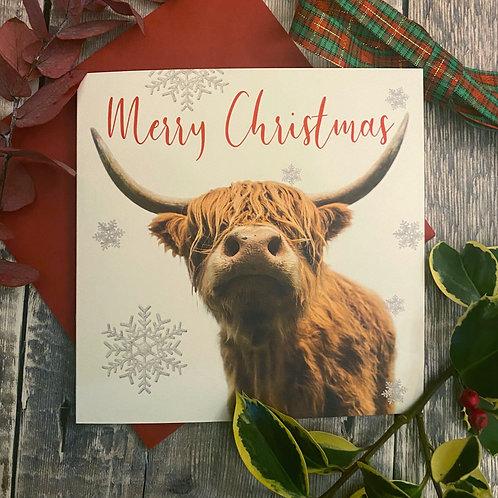 Highland Cow Christmas Card