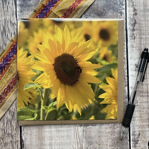 Sunflower Greeting Card - Large bright yellow sunflower