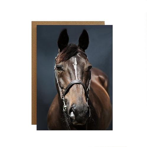 Horse Portrait Greeting card