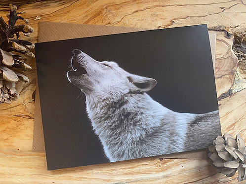 Howling Wolf Greeting Card (WGC003)