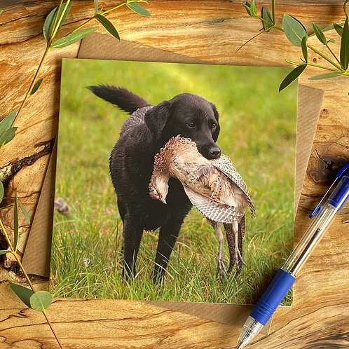 Look what I Found - Black Lab Card