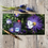 Thumbnail: Cabbage white and flower greeting  card