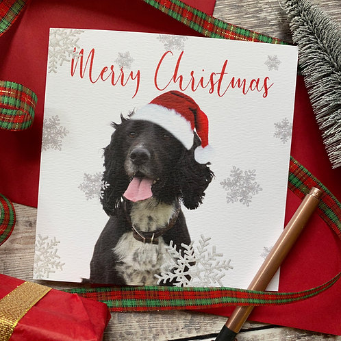 Spaniel Christmas Card