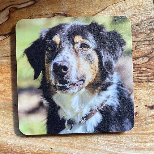 Border Collie Drinks coasters
