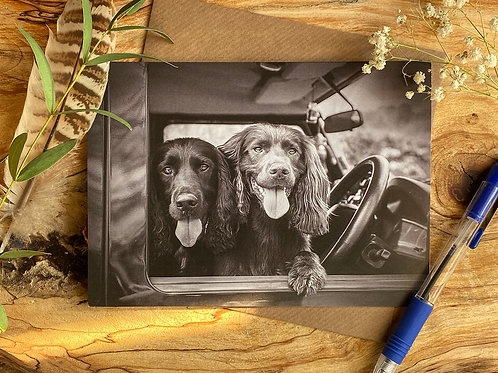 Spaniels in Defender Greeting Card