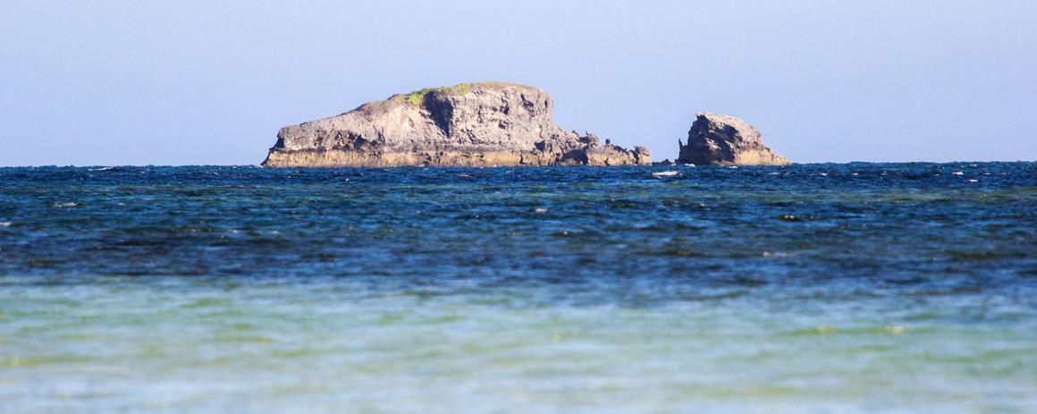 whale-island-watamu.jpg
