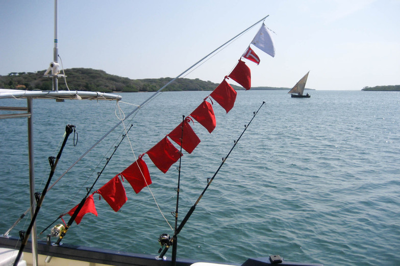 nic-kiwayu-fishing-sailfish-flags.jpg