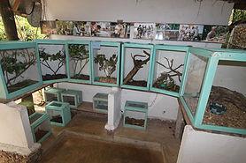 bio-ken-snake-farm-watamu-0756.jpg