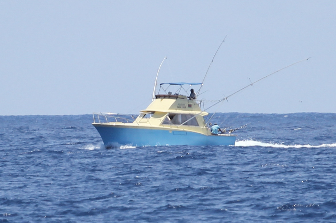 Alleycat - Offshore big game fishing