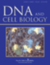 dna.2020.39.issue-6.cover.jpg