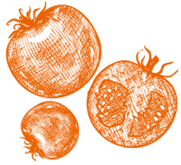 icon_tomato_orange.png