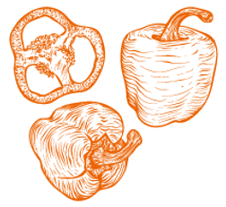 icon_papurica_orange.png