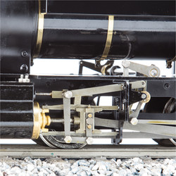 S19-31B D1