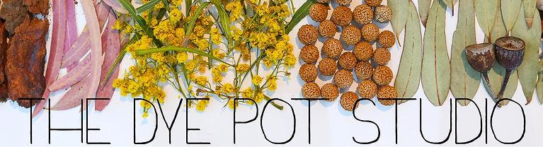 Dye Pot Studio Logo.jpg