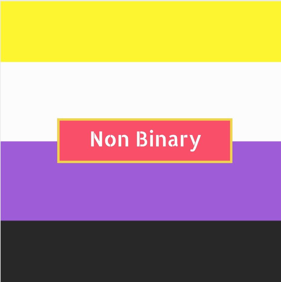 Non Binary flag