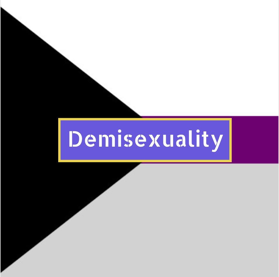 Demisexuality flag