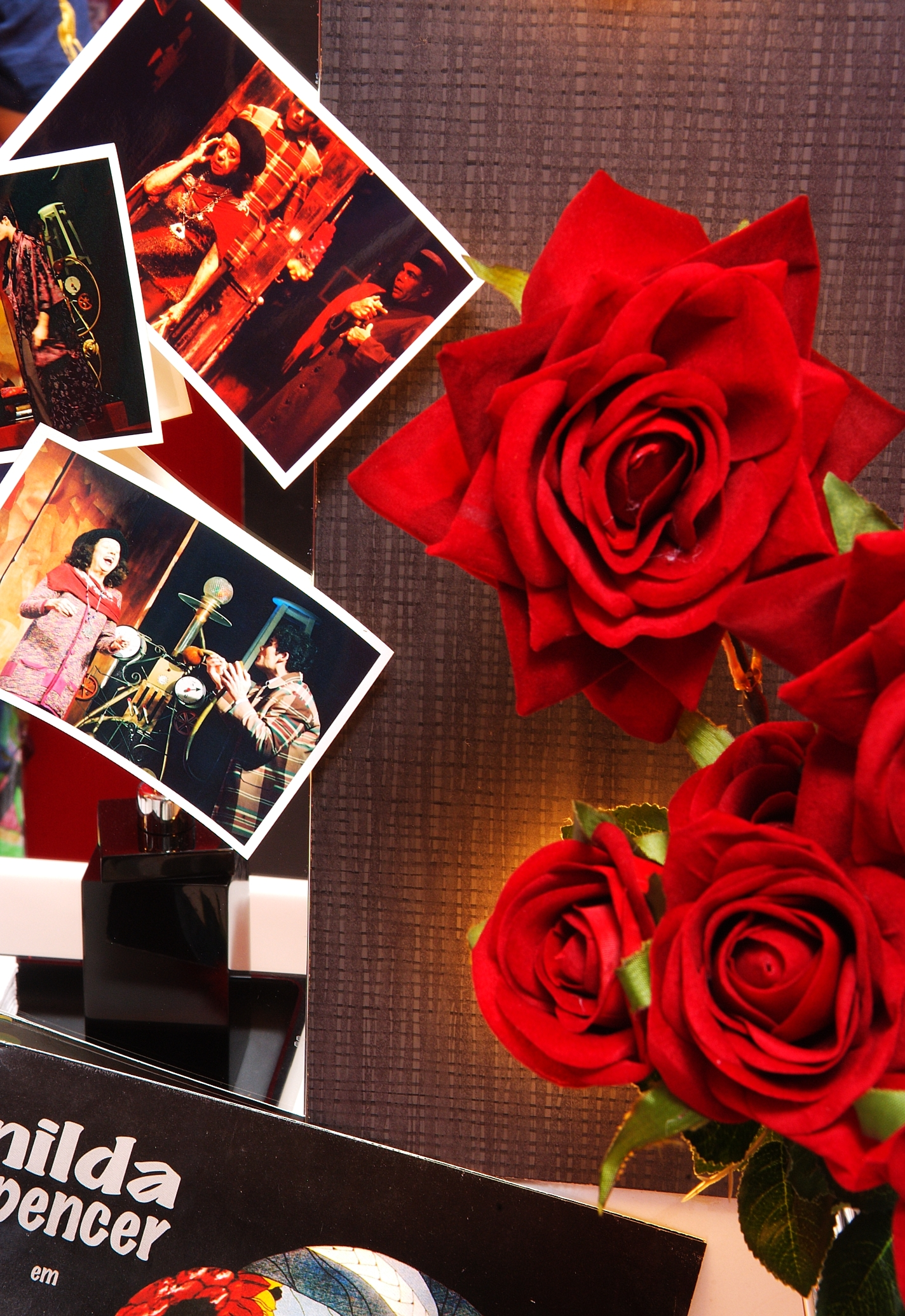 Flores no camarim de Nilda Spenser