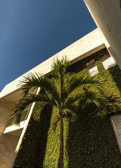 Parede Verde para amenizar incidência solar na fachada poente