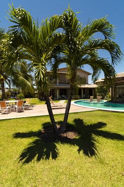Paisagismos com palmeiras em casa de praia