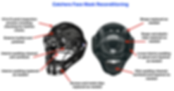 Baseball catchers mask.png