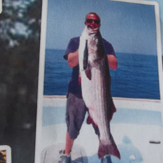 Woman's Record 66lb. Striper Caught Off Connecticut On A Domsson Lure