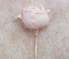 バラ色1-3.png