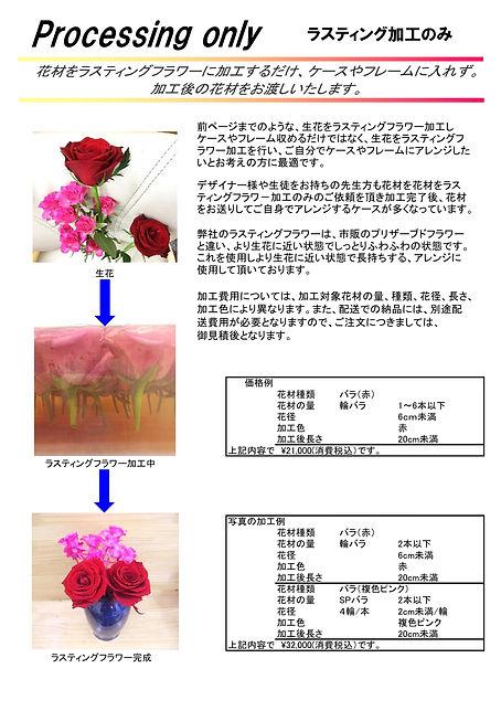 010.ブーケ加工カタログ(アークフローラ用)01-00 Ver.7.0D_PAGE0014.jpg